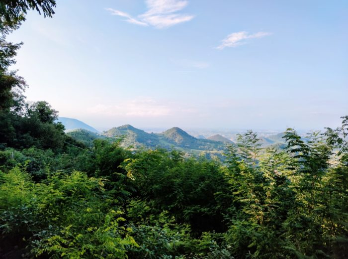 Okoliczne wzgórza euganejskie.