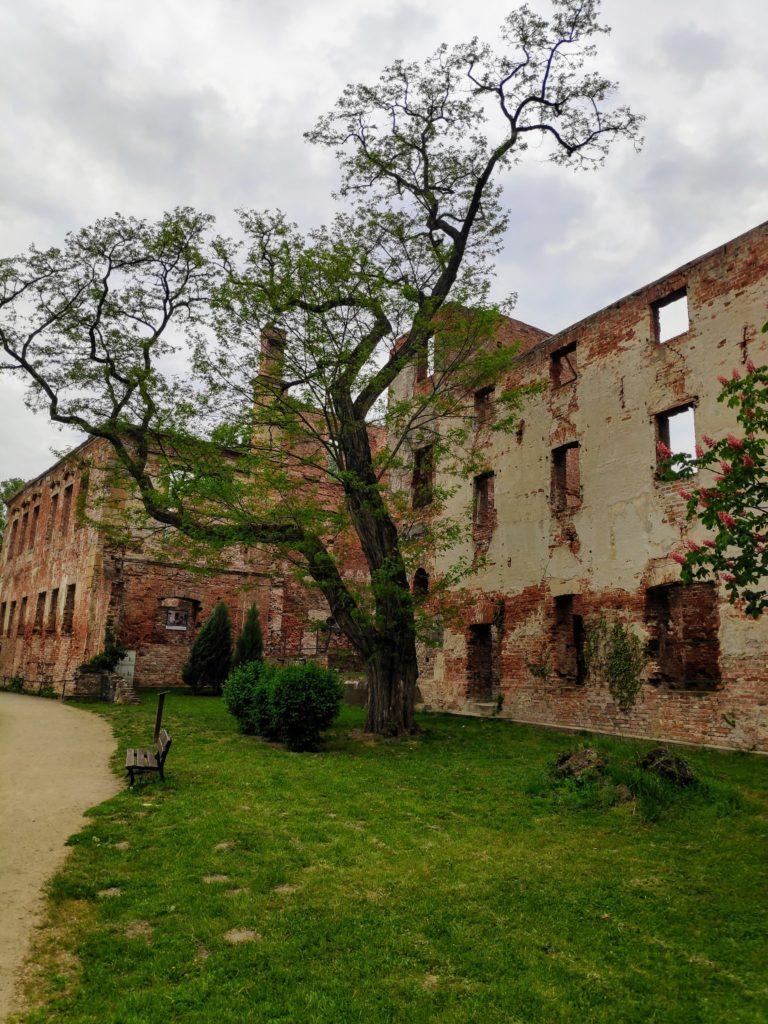 Żmigród – Zespół pałacowy zXVII w. Pałac Hatzfeldów wraz zpięknym parkiem.
