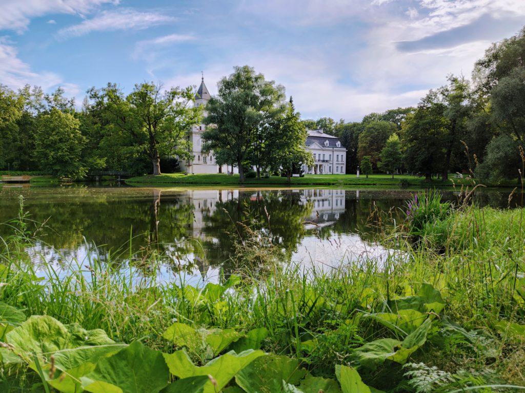 Otoczony zielenią radziejowicki pałac